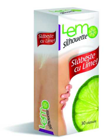 lemo_3D