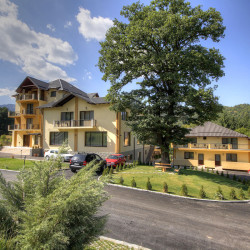 tur-virtual-hotel-complex-turistic-stejarii-brasov-011-250x250